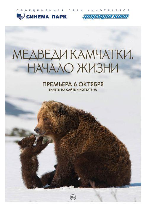 Изображение для новости Премьера! Фильм о жизни камчатских медвежат